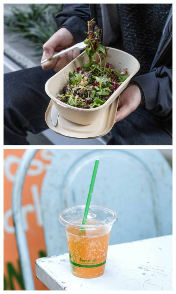 Ecoware's biodegradable straws and pasta bowls