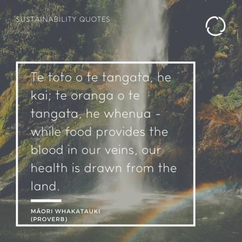 Māori whakatauki (proverb)