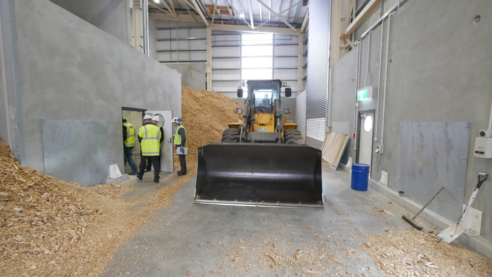 Fuel to be used in Burwood Hospital's biomass energy plant.
