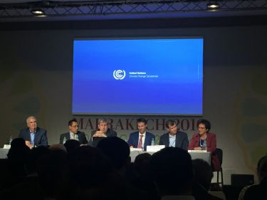 Panel of experts at the Carbon Markets side event