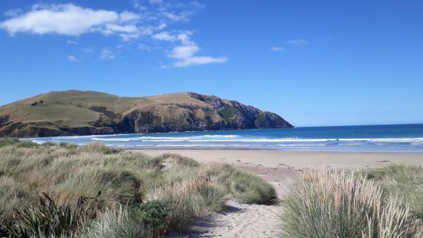 Beach Walk Ocean