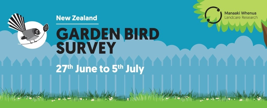 NZ Garden Bird Survey