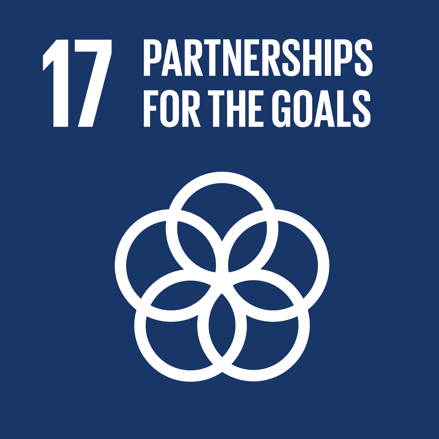 Goal 17: Partnership for the Goals