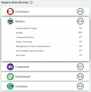 Toitū's B Corp scorecard from 2019