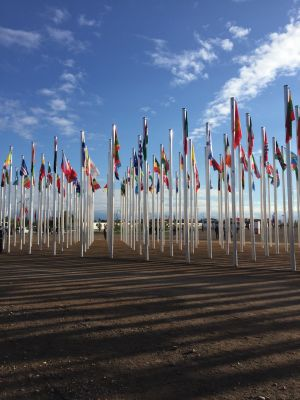 Flags outside the COP22 venue