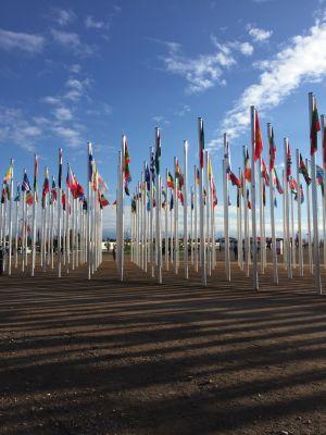 Flags outside the COP22 venue