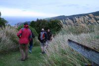 Visitors at the Hinewai Reserve near Christchurch
