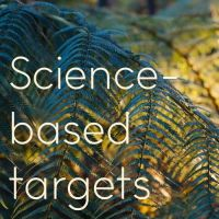 science based targets text over an image of ferns