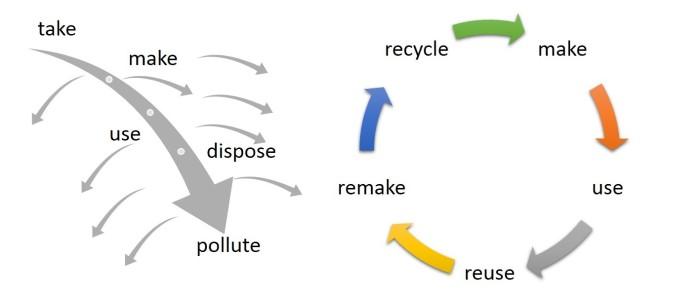 Linear vs circular economies